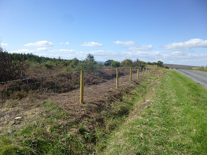 Moorland restoration work underway at Westonby Moor